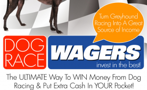 Dog Race Wagers Review