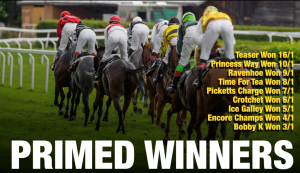 Primed Winners Review
